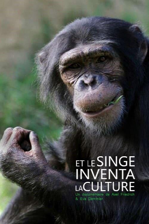 Das Geheimnis der Affen - Kulturforschung bei Schimpansen