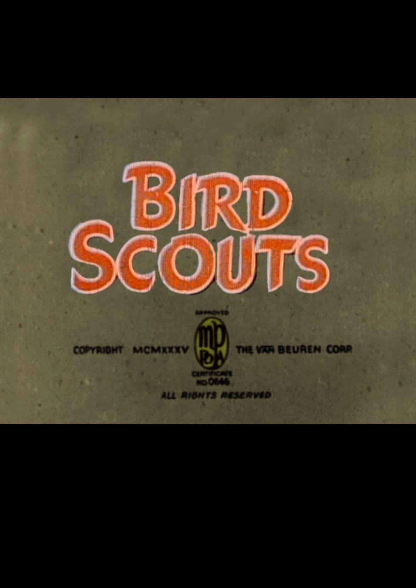 Bird Scouts