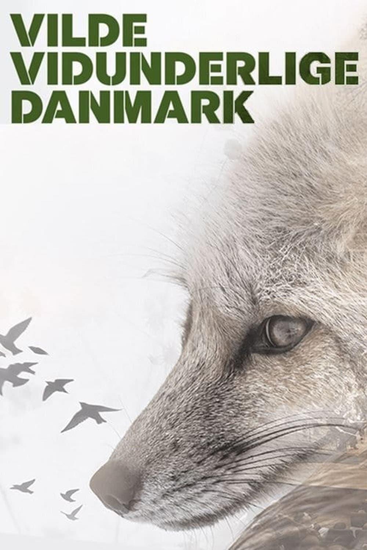 Wild and Wonderful Denmark
