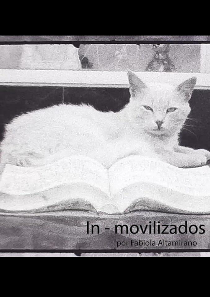 In - movilizados