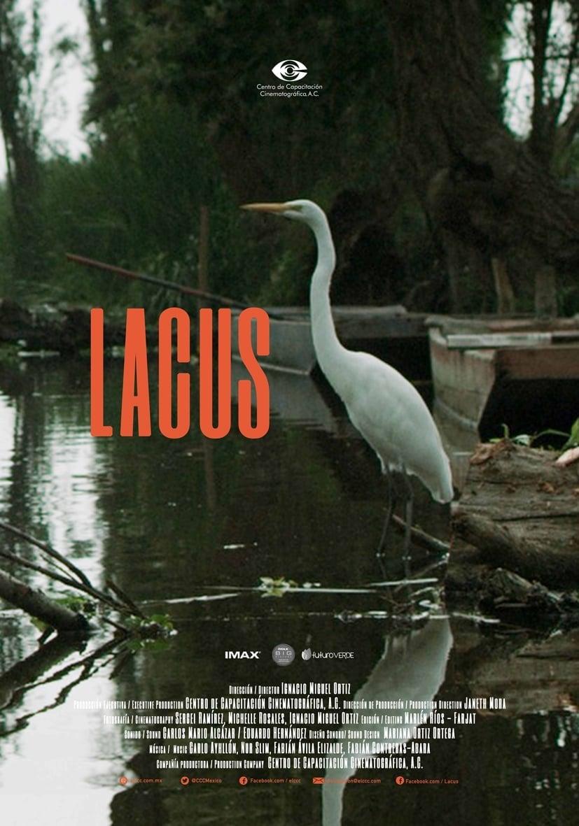 Lacus