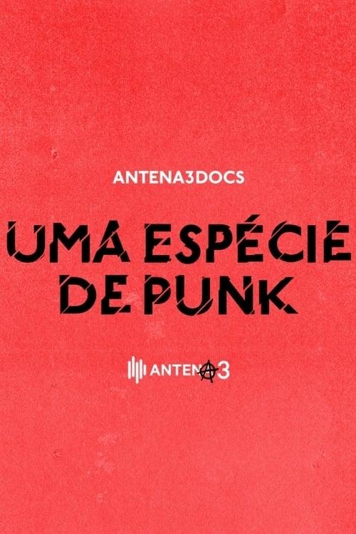 Uma Espécie de Punk