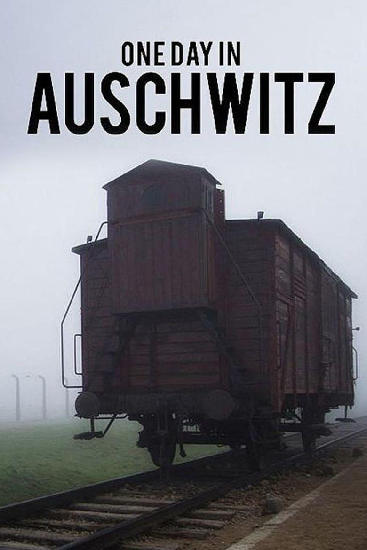 Um Dia em Auschwitz
