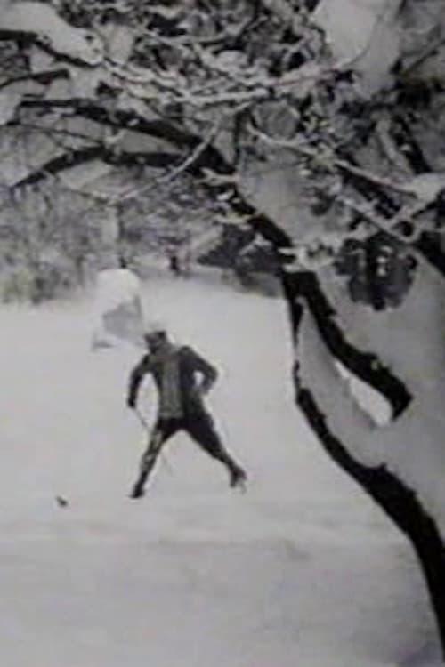 Max Skiing