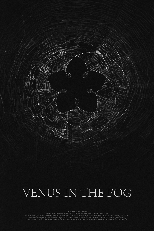 Venus in the Fog