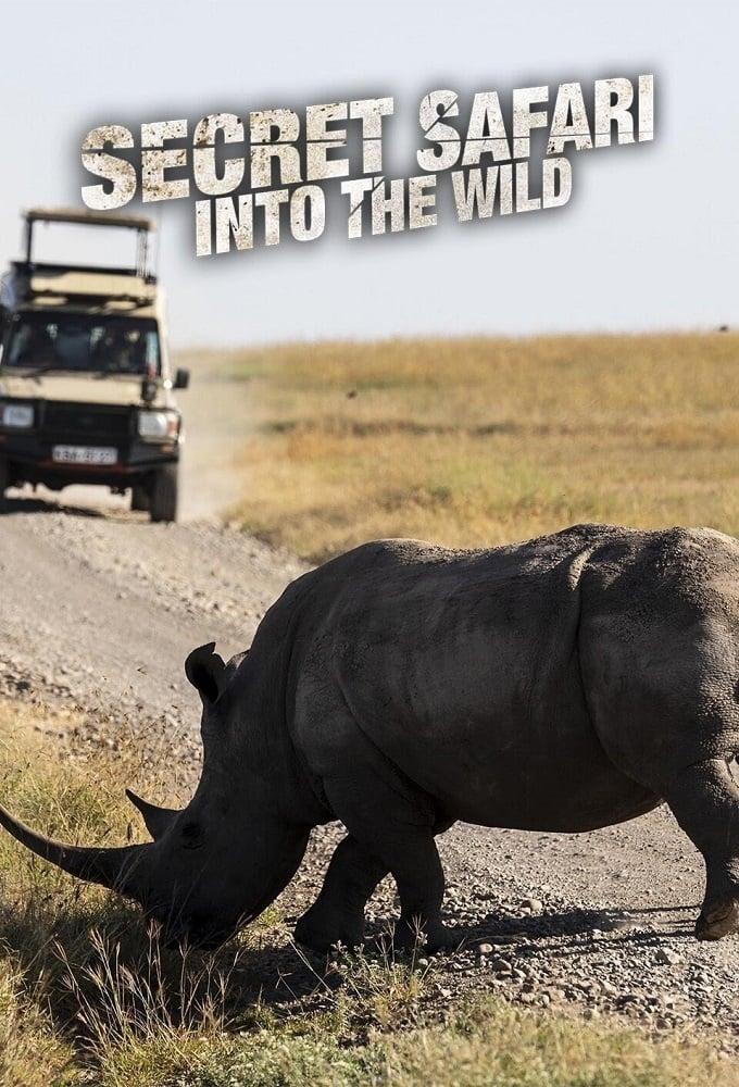 Secret Safari: Into the Wild