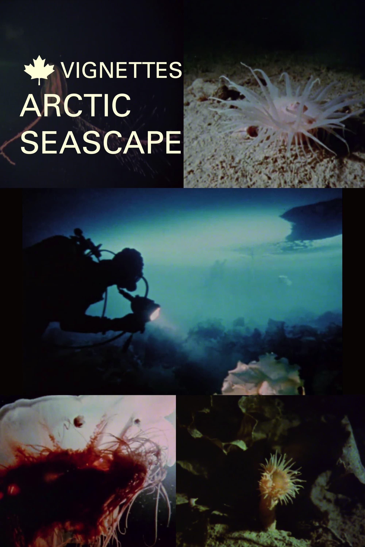 Canada Vignettes: Arctic Seascape