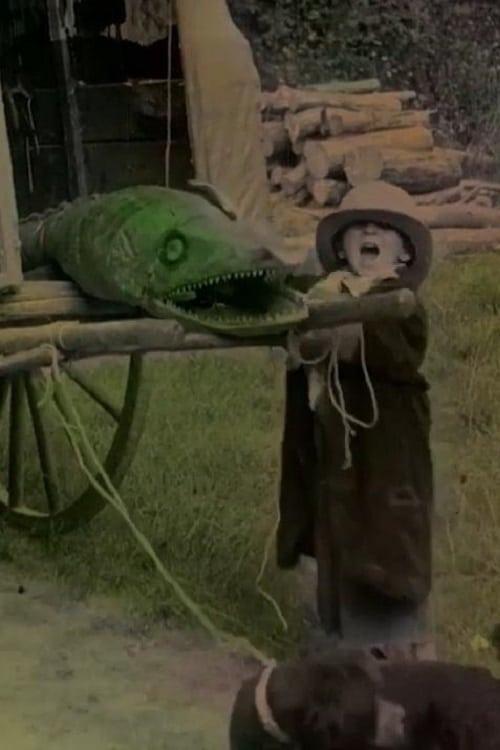 Bout-de-Zan and the Crocodile