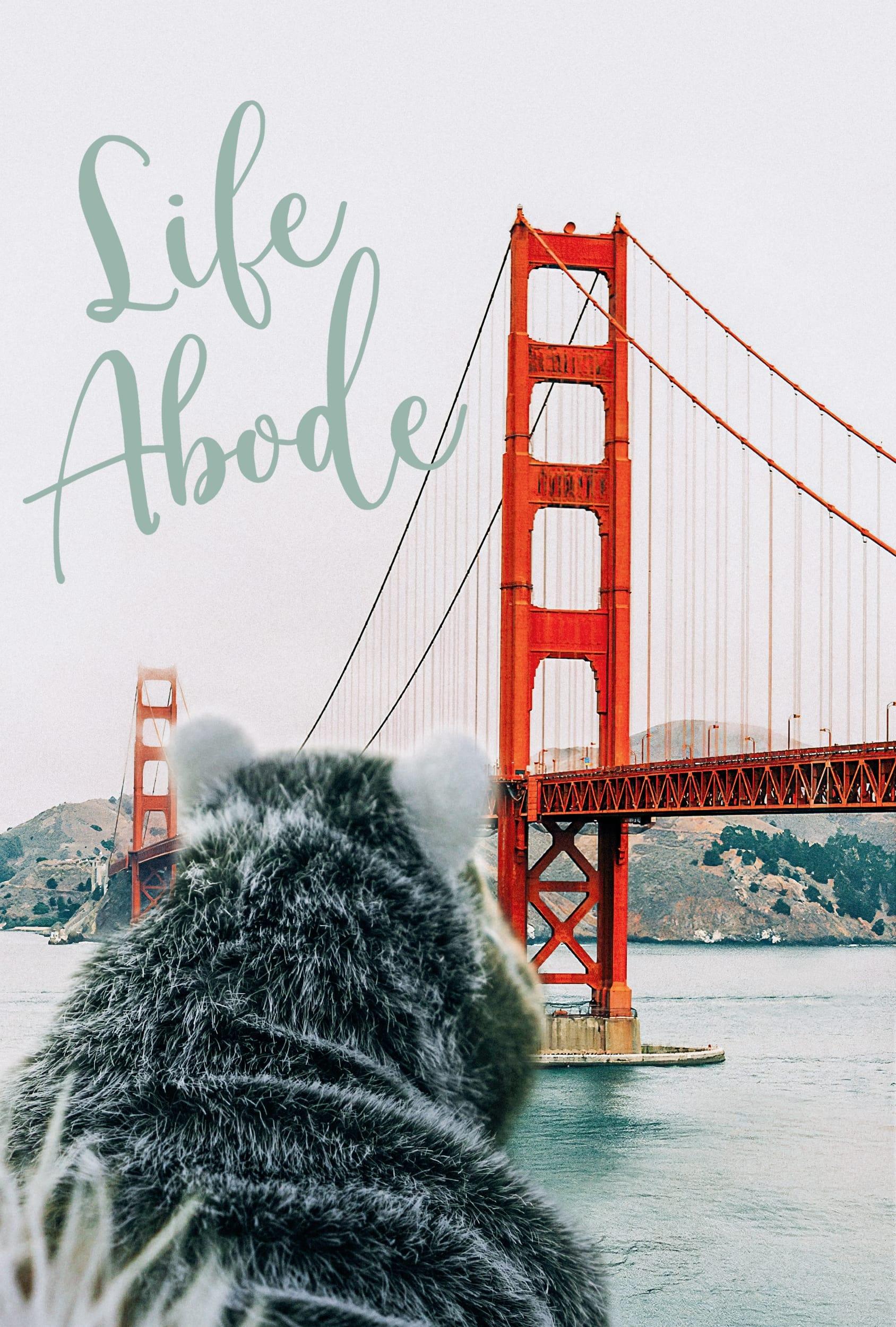 Life Abode