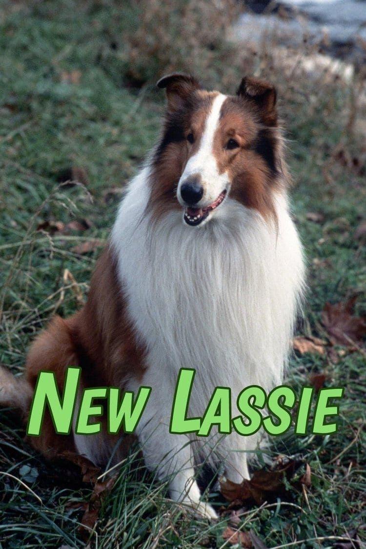 The New Lassie