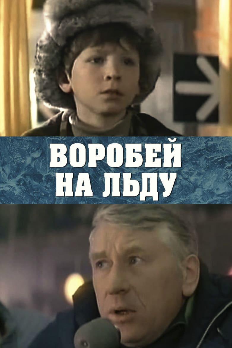 Воробей на льду