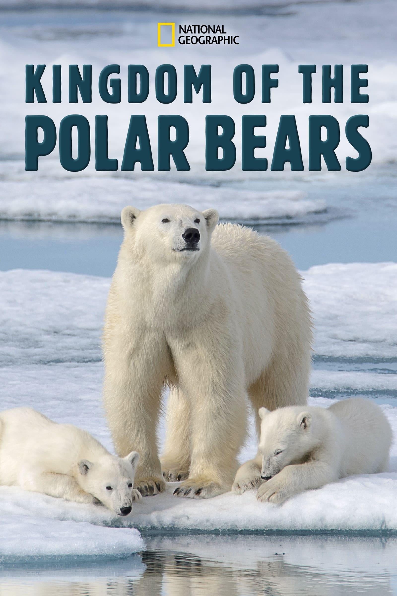 Mundo Secreto dos Ursos Polares