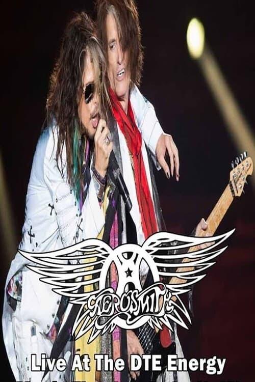 Aerosmith Live In Detroit Proshot