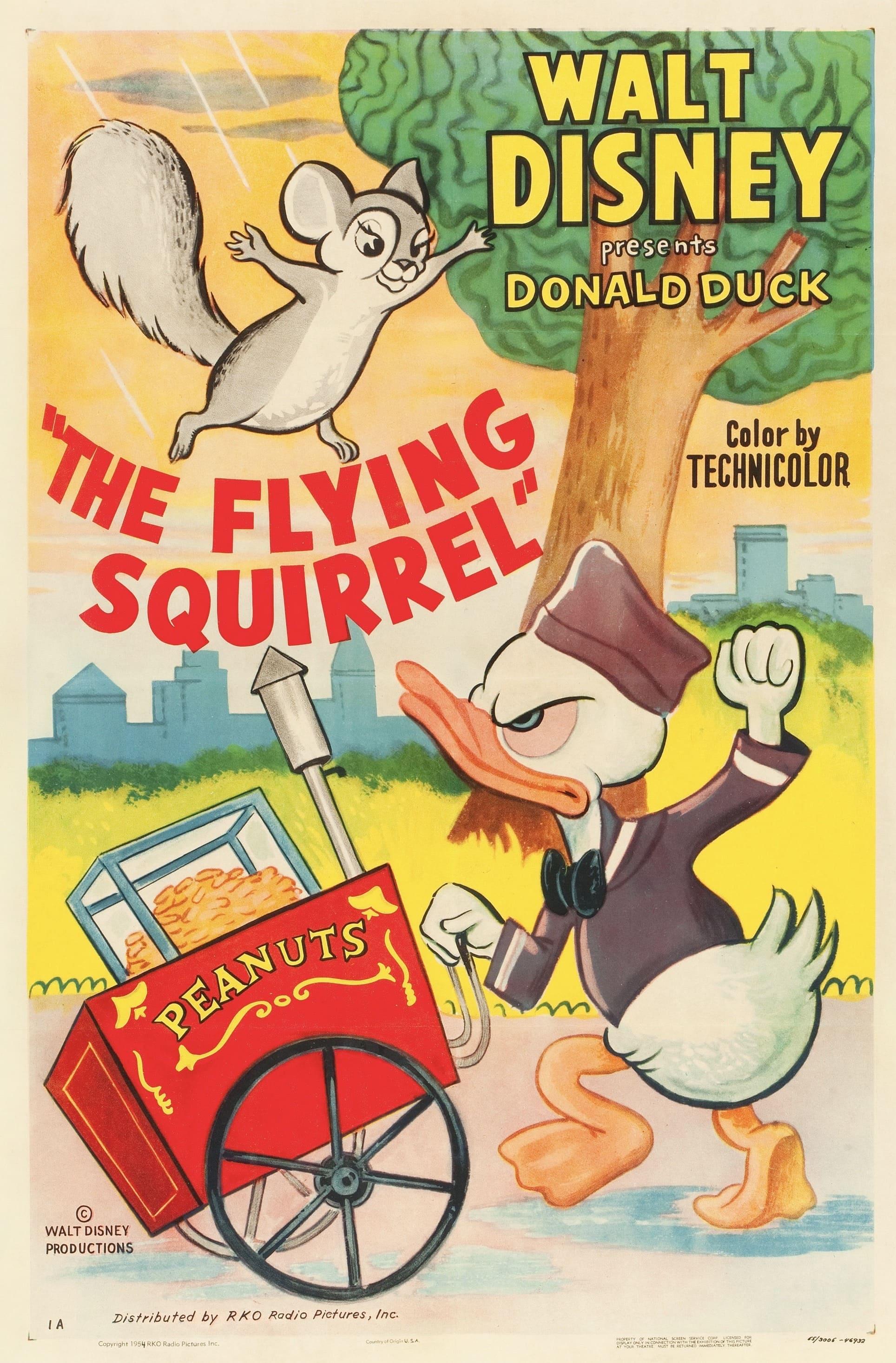 Donald et l'écureuil volant