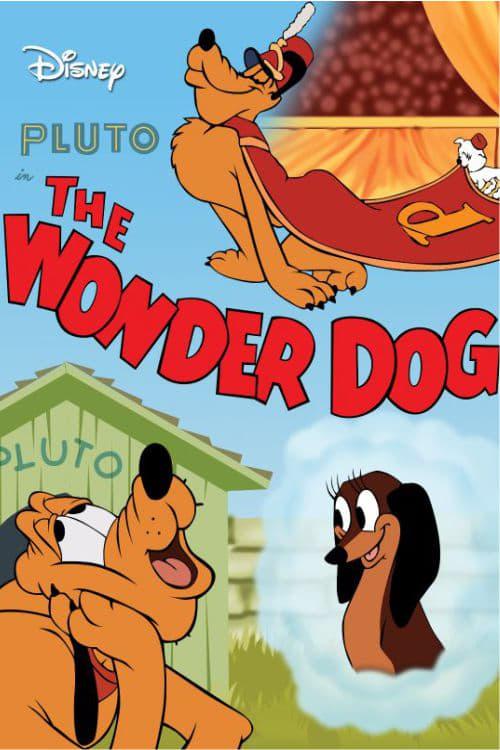 Pluto acrobate