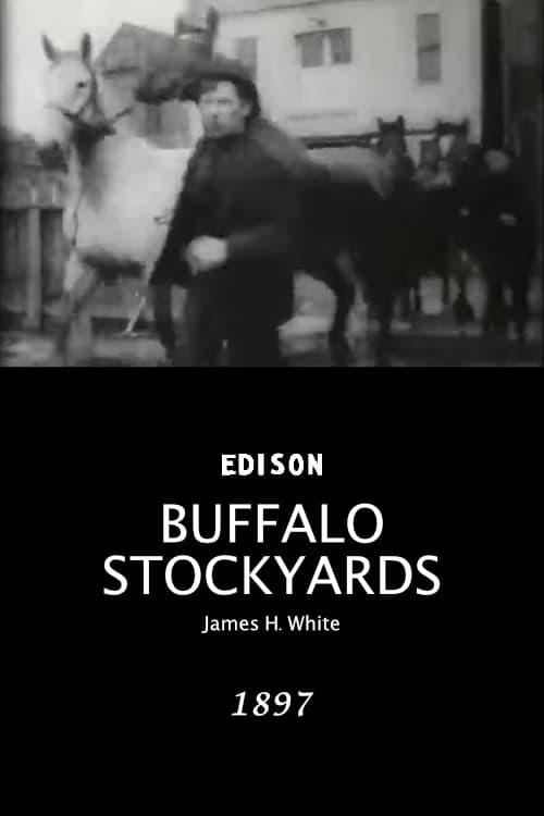 Buffalo Stockyards