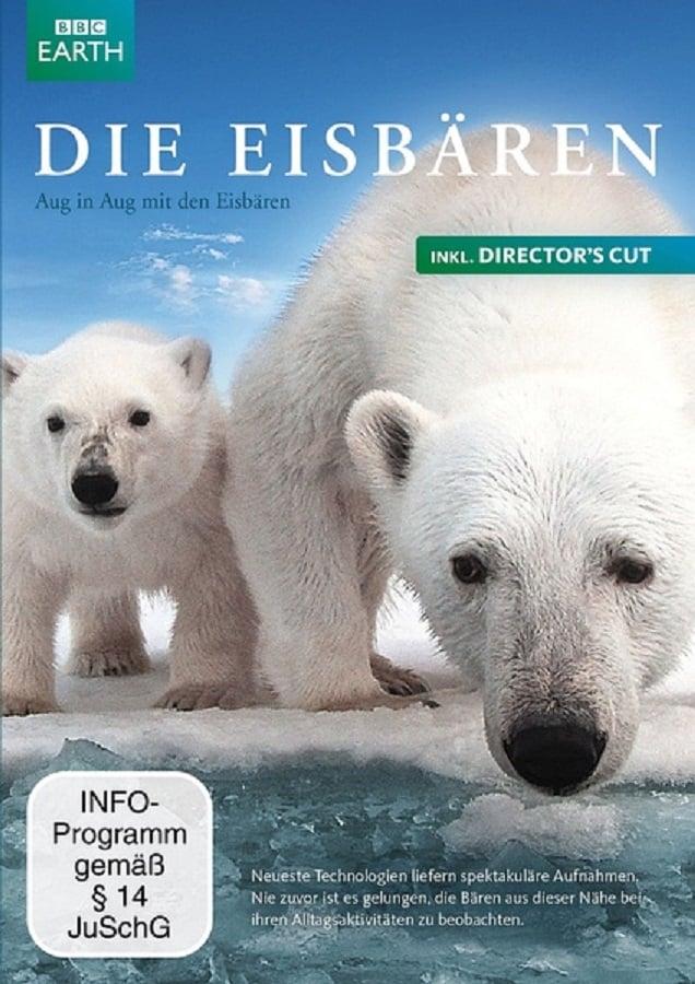 Polar Bear: Spy on the Ice