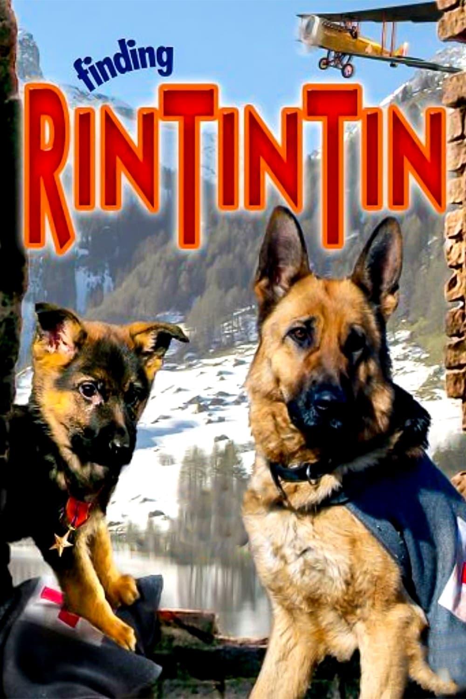 Finding Rin Tin Tin
