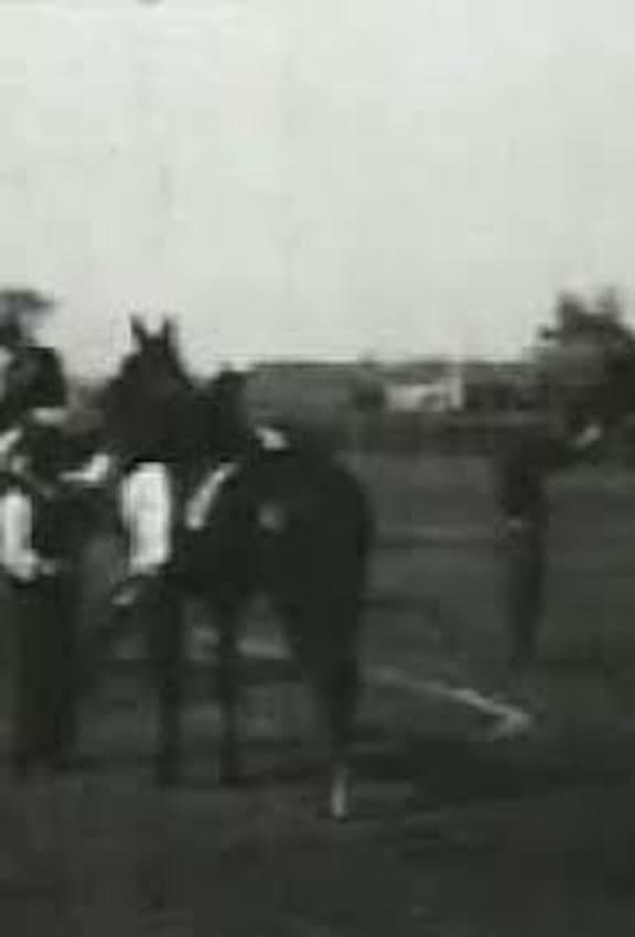 Racing at Sheepshead Bay