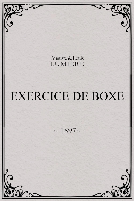 Exercice de boxe