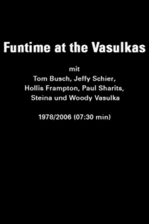 Funtime at the Vasulkas