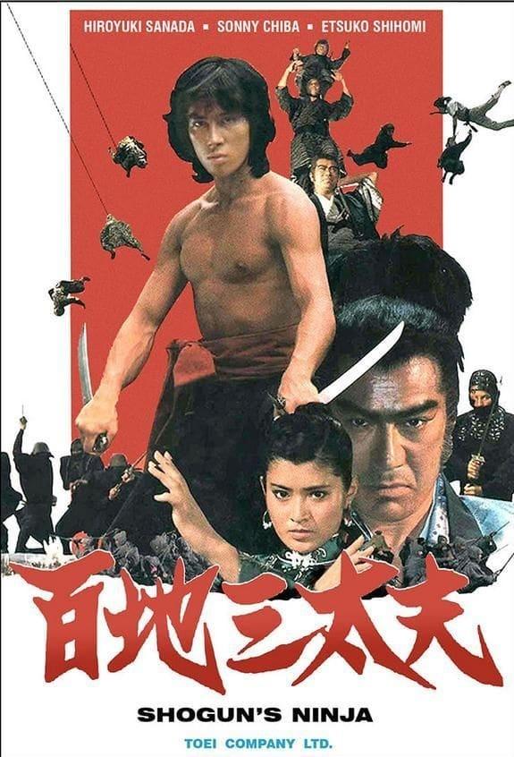 El guerrero ninja