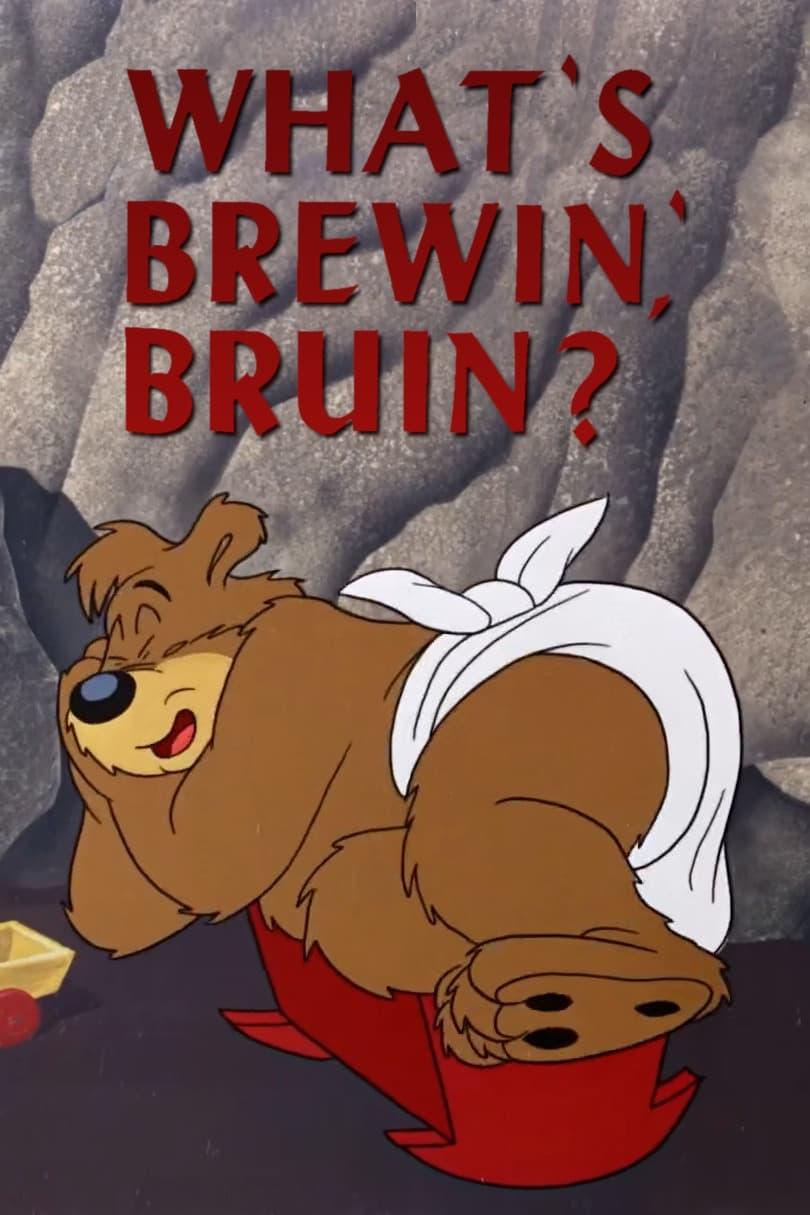 What's Brewin', Bruin?