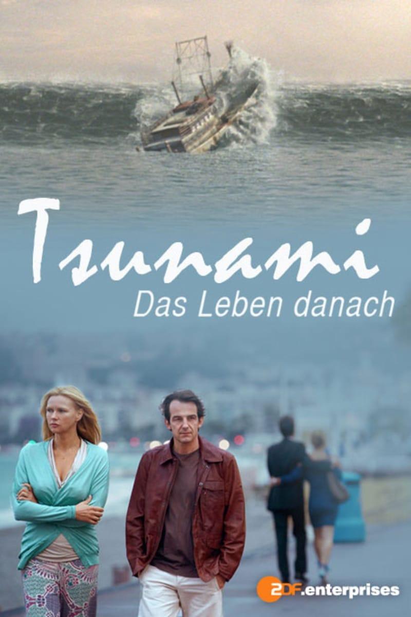 Tsunami: más allá de la tragedia