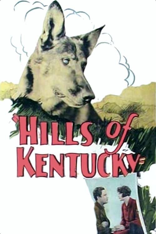 Hills of Kentucky