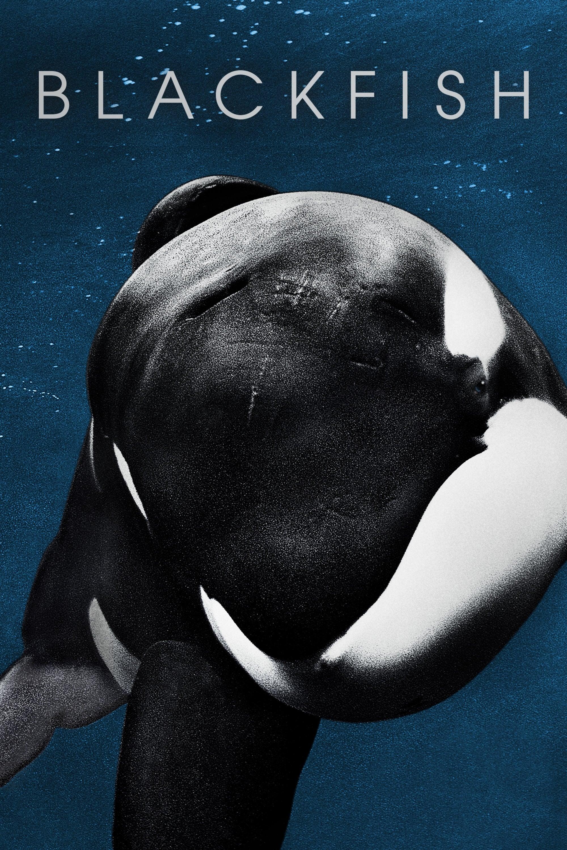 Blackfish – Fúria Animal