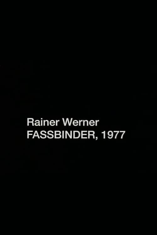 Rainer Werner Fassbinder, 1977