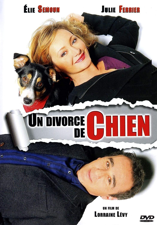 Un divorce de chien